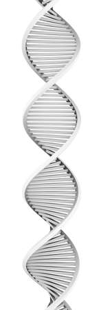 nucleic: Generic DNA Helix