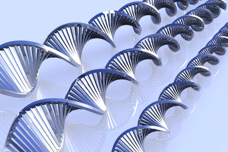 nucleic: DNA Helix