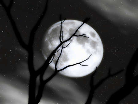 nightshade: Nightshade