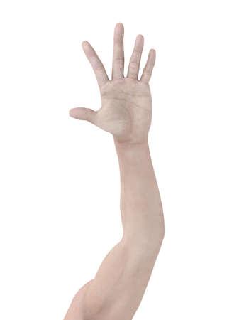euphoric: Arm Stock Photo