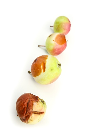 Stages of decay. A rotting Apple. Stock Photo