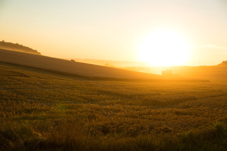 A harvested field in Germany in the sunset. photo