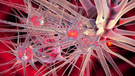 human cell: 3D Illustration of neuronal cells.