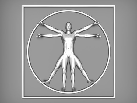 interpretation: 3d rendered interpretation of the famous Leonardo DaVinci sketch.