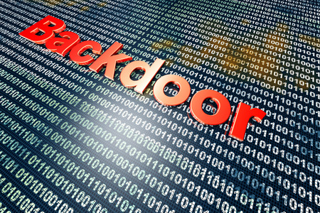 backdoor: A digital backdoor, a vulnerable port for a hakers attack. 3D rendered Illustration. Stock Photo