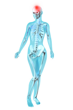 Female anatomy. Headache. 3D illustration. illustration