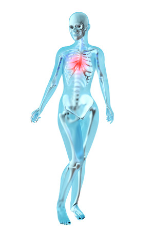 colitis: Female anatomy. Pain in the chest. 3D illustration. Stock Photo
