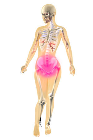 menstrual pain: Menstrual pain. Female anatomy illustration.