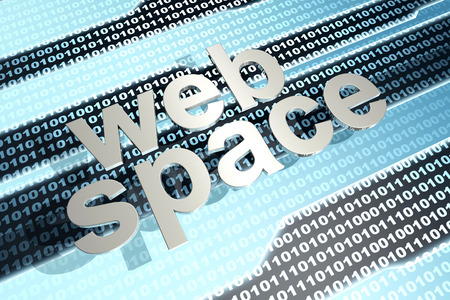 webspace: Digital webspace and binary code. 3D illustration.