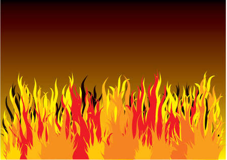 wildfire: Put youre text on the fire background Illustration