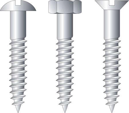 Vector illustration of screws Vector