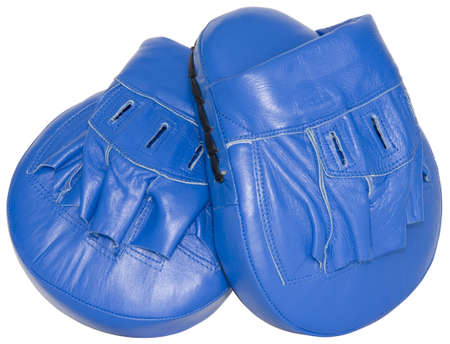 mitts: Blue punching focus mitts