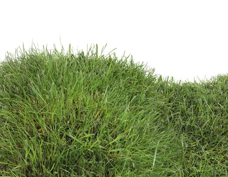 grassy field: Grassy Hill Isolated on White