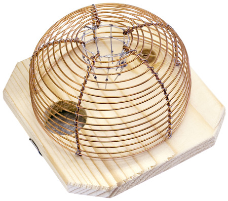 mouse trap: Mouse Trap Cage Isolated Stock Photo