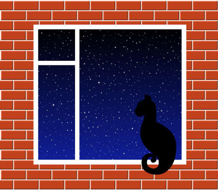 Cat on window Vector