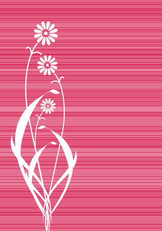 Abstract pink flowers lines cover Vector