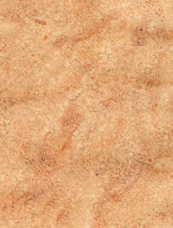 Brown watercolor background photo