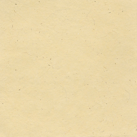 paper background: White paper background