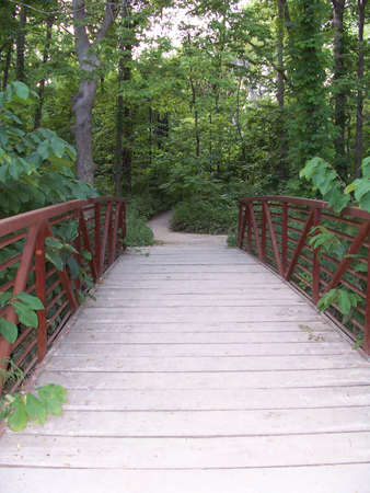 A bridge into the woods. Stock Photo - 473720