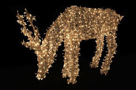 deer made of christmas-lights against black background