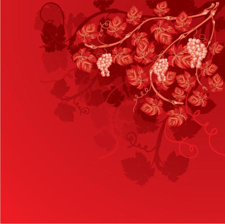 Vine background with grapes, element for design, vector illustration Vector