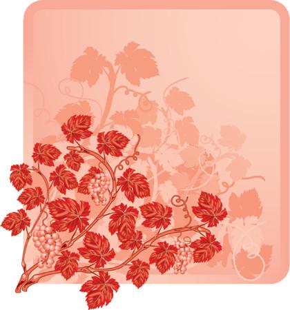 Vine background with grapes, element for design, vector illustration