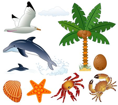 Collect element for design (summer, palm tree, coconut, dolphin, seagull, crab, starfish). Vector illustration