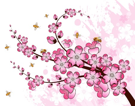 sakura flowers: Grunge paint flower background with bee, element for design, vector illustration