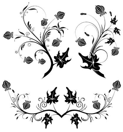 Collect flower background, element for design, vector illustration Vector
