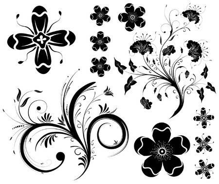 collect: Collect flower background, element for design, vector illustration Illustration