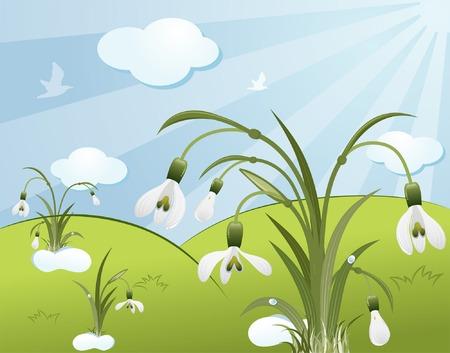 snowdrop: Flower background with snowdrop, birds, clouds, element for design, vector illustration