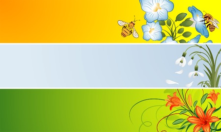 Three variant flower banner with snowdrop, bee, lily, element for design, vector illustration Vector