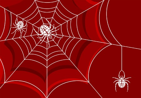 Background with web and spider, element for design, vector illustration Vector