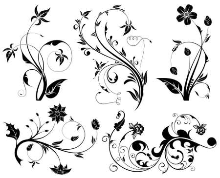 Big Collection Beautiful Flowers, element for design, vector illustration Vector