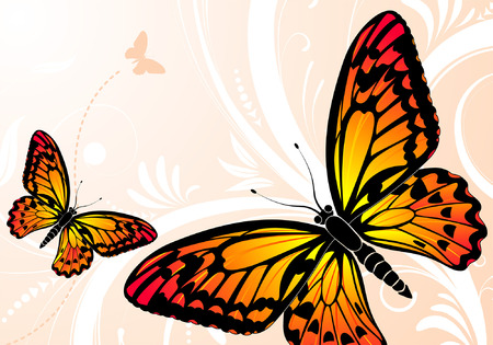 butterfly vector: Floral background with butterfly, element for design, vector illustration