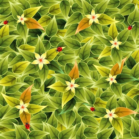 Floral Pattern with Leaves and Ladybug, element for design, vector illustration Vector
