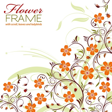 Floral Frame with Ladybird, element for design, vector illustration Stock Vector - 11453299
