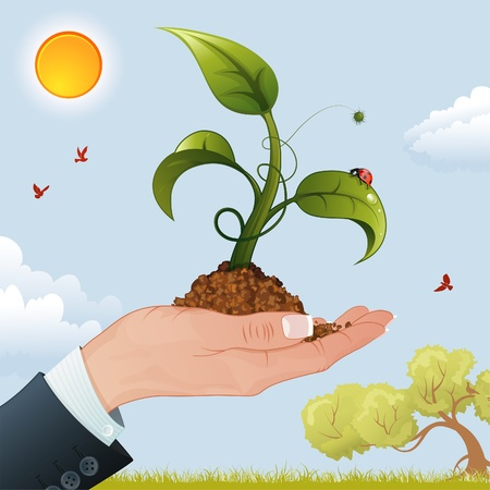 Business Woman Hand with the Sprout from the Ground on Nature Background Vector