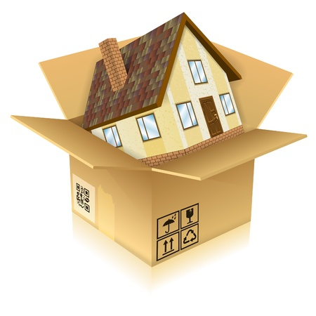 Icon House in Box - Real Estate Concept, isolated on white background Vector