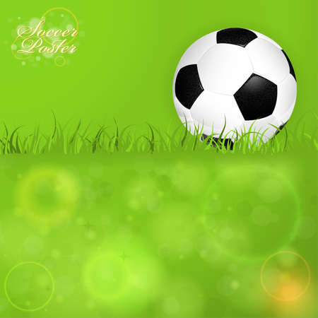 Soccer Ball on Grass with Bright Background Vector
