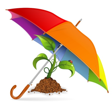 Environment Protection Concept - Umbrella protects Sprout, isolated on white background, vector illustration Stock Vector - 16715043