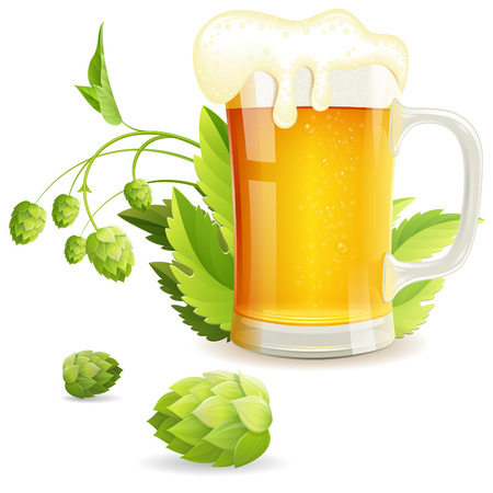 green beer: Glass of Beer with Hops, vector isolated on white background