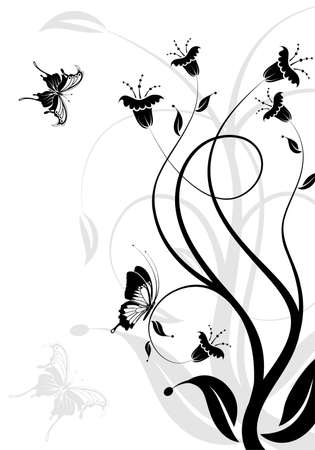 scroll border: Flower background with butterfly, element for design,  illustration