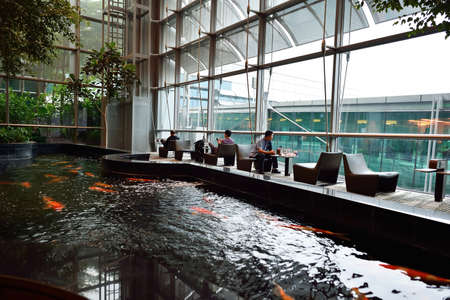 avia: SINGAPORE - NOVEMBER 04, 2015: interior of Changi Airport. Singapore Changi Airport, is the primary civilian airport for Singapore, and one of the largest transportation hubs in Southeast Asia