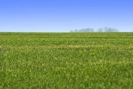 Sky and green grass landscape. Ideally for your use. Stock Photo - 809358