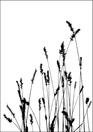 grass vector black silhuette. Ideally for your use Stock Vector - 839183