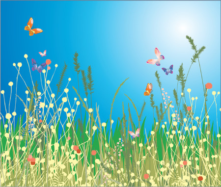 Flowers, grass and butterfly. A beautiful meadow! Stock Vector - 866567