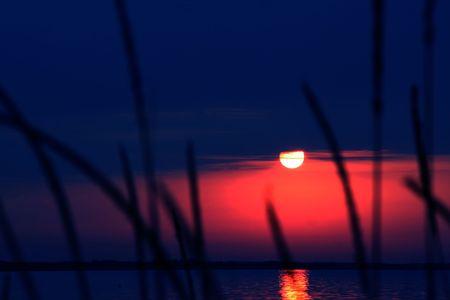 inmejorablemente: El sol y el agua. Lo ideal para el uso en su dise�o. Foto de archivo