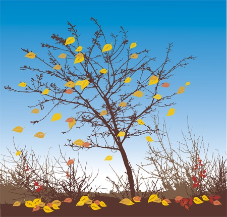 autumn vector illustration Stock Vector - 1455744