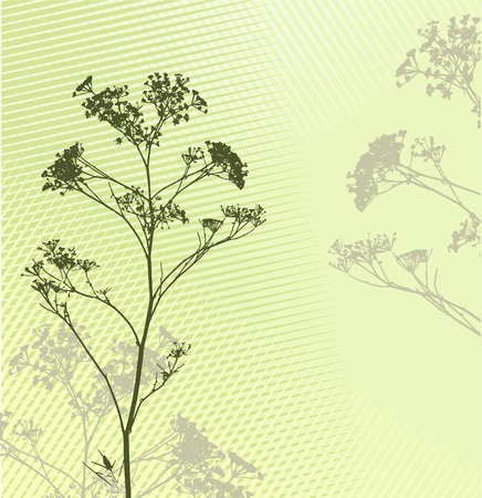 abstract vectors: grass silhouette background  Ideally for your use Illustration